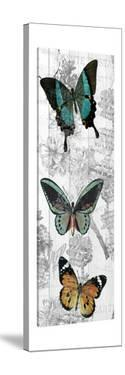 Butterflies Are Free 2 by Kimberly Allen