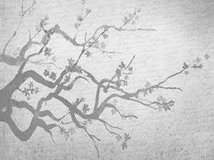Cherry Blossom Branch in Silver by Kimberly Allen