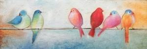 Colorful Birds On A Wire by Kimberly Allen