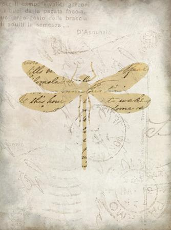 Dragonfly Letters 1 by Kimberly Allen