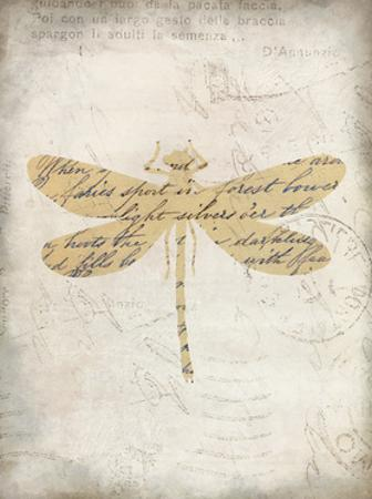 Dragonfly Letters 2 by Kimberly Allen