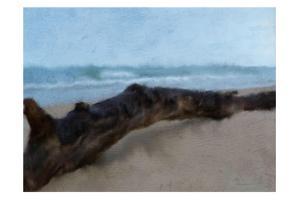 Driftwood by Kimberly Allen