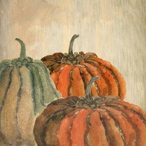 Fall Pumpkins by Kimberly Allen