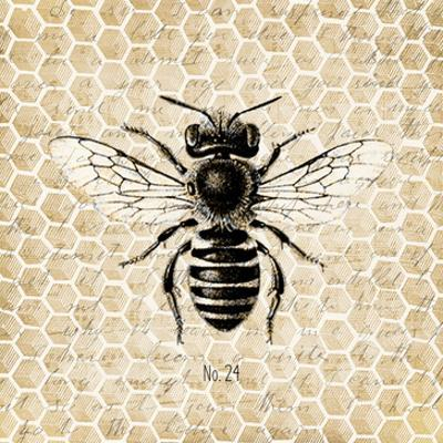 Honeycomb No 24 by Kimberly Allen