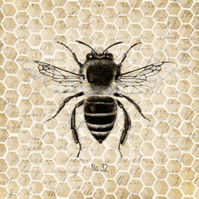Honeycomb No 32 by Kimberly Allen