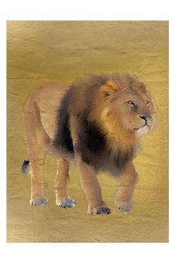 Lion Gold by Kimberly Allen