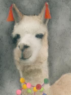 Llama by Kimberly Allen