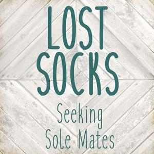 Lost Socks by Kimberly Allen