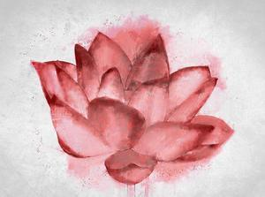 Lotus Blossom by Kimberly Allen
