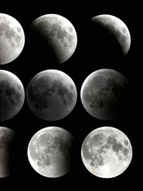 Moon Phase 2 by Kimberly Allen