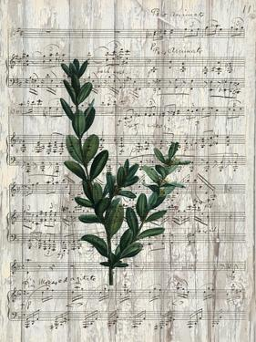 Musical Botanical 1 by Kimberly Allen