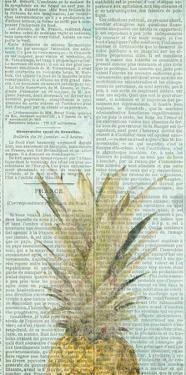 Newspaper Pineapple by Kimberly Allen