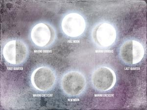 Phases of the Moon by Kimberly Allen