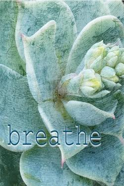 Relax and Breathe 2 by Kimberly Allen