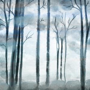 Shrouded Forest by Kimberly Allen