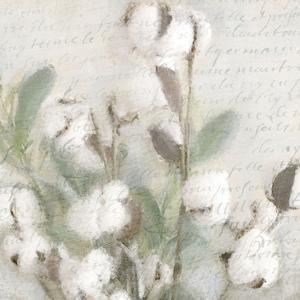 Soft Cotton 2 by Kimberly Allen