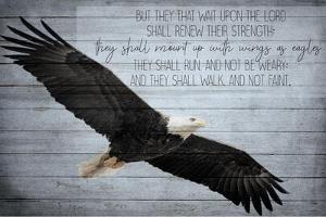 Wings as Eagles by Kimberly Allen