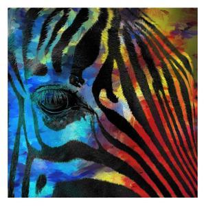 Zebra 2 by Kimberly Allen