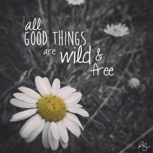 Wild and Free 1 by Kimberly Glover