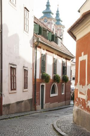 Cobblestone Street and Narrow Buildings with Church Towers in Background, Eger, Hungary by Kimberly Walker