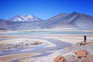 Man Standing on Rocks Looking over Miscanti Laguna, Turquoise Mineral Lake, San Pedro De Atacama by Kimberly Walker