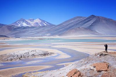 Man Standing on Rocks Looking over Miscanti Laguna, Turquoise Mineral Lake, San Pedro De Atacama by Kimberly Walker