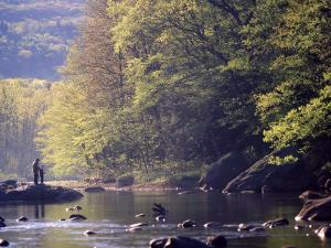 Father and Son Fly-Fishing, Deerfield River, MA by Kindra Clineff