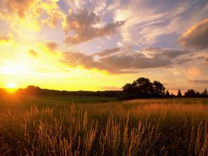 Sunset Over Salt Marsh, Essex, MA by Kindra Clineff