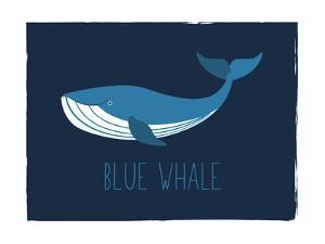 Blue Whale by Kindred Sol Collective