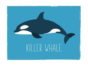 Killer Whale by Kindred Sol Collective