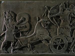 King Ashurnazirpal Hunting Lions, a Lion Leaping at the King's Chariot