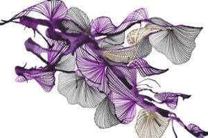 Sander by Kiran Patel