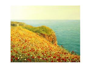 Poppies On Kaliakra by kirilstanchev