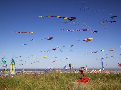 https://imgc.allpostersimages.com/img/posters/kites-international-kite-festival-long-beach-washington-usa_u-L-PHAJ2T0.jpg?p=0
