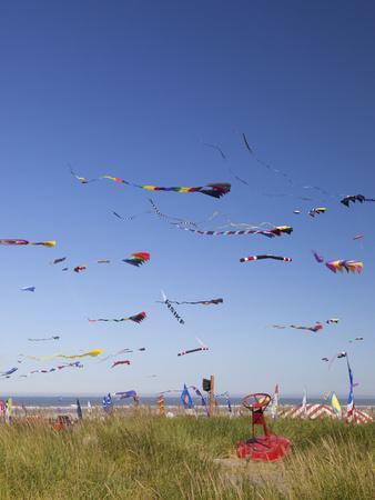 https://imgc.allpostersimages.com/img/posters/kites-international-kite-festival-long-beach-washington-usa_u-L-PHAJ3G0.jpg?p=0