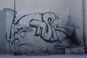 After Trapped in an Empty Shed, Badger (Meles Meles) Passes Graffiti on its Return to the Forest by Klaus Echle