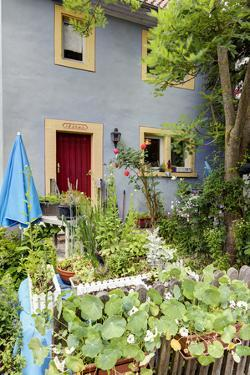 Facade, Garden, Iphofen, Bavaria, Germany, Europe by Klaus Neuner