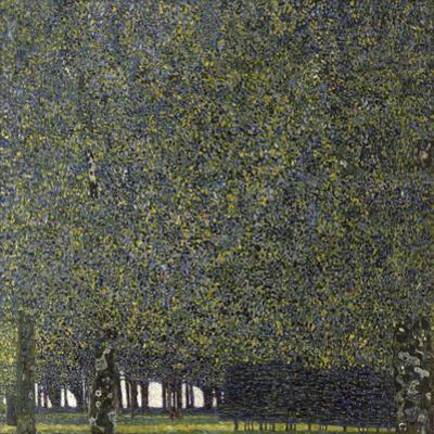 Klimt, the Park