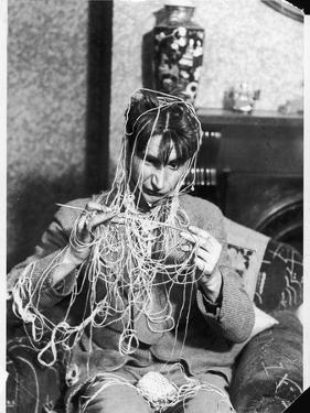 Knitting Expert