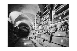Die Katakomben der Kapuziner in Palermo (Le Catacombe dei Capuccini) by Knorr & Hirth
