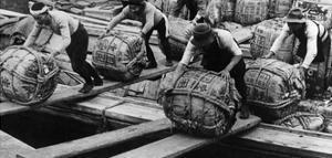Hafenarbeiter in Tokio, 1930er Jahre by Knorr & Hirth