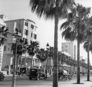 Straße in Alexandria, 1939 by Knorr & Hirth