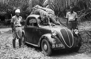 Big Game Hunters with 2 Tigers, 1939 by Knorr Hirth Süddeutsche Zeitung Photo