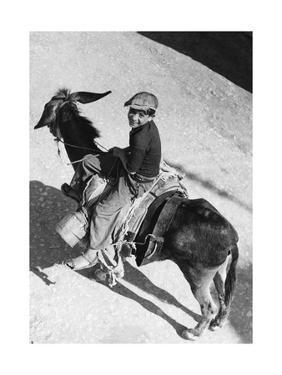 Boy Riding a Donkey in Italy, 1939 by Knorr Hirth Süddeutsche Zeitung Photo