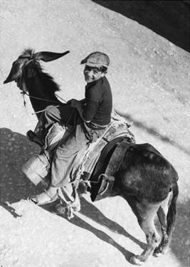 Boy Riding a Donkey in Italy, 1939 by Knorr Hirth Süddeutsche Zeitung Photo