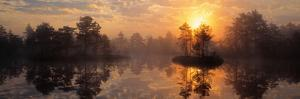 Knuthojdmossen Nature Reserve Sweden