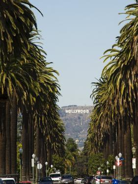 Hollywood Hills and the Hollywood Sign, Los Angeles, California, USA by Kober Christian