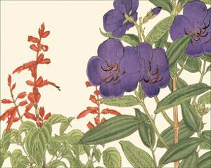 Small Japanese Flower Garden VI by Konan Tanigami