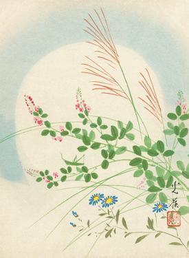 Spring Flowers and Grasses by Korei