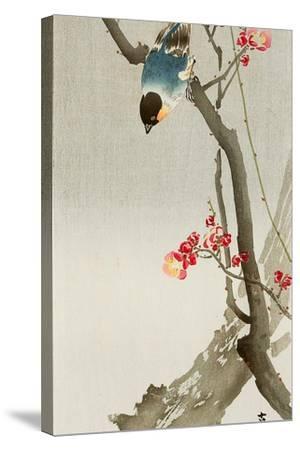 Blue Bird on a Plum Tree